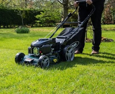 Webb classic self propelled petrol rotary lawnmower MA30001119 Crocus